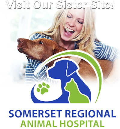 Visit our sister site, Somerset Regional Animal Hospital